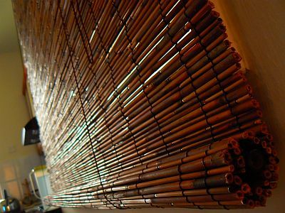 bambus61